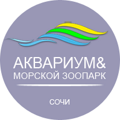 aquarium-sochi.png